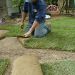 Lawn Care in New Canaan CT