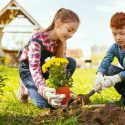 The Benefits of Picking New Flowers Each Year for Your Garden